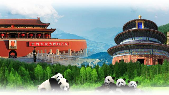 WLC China Education Center's Scholarship 2018